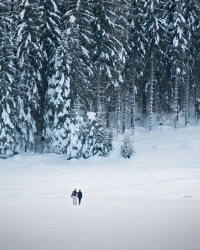 Distant view of couple standing on snowy land