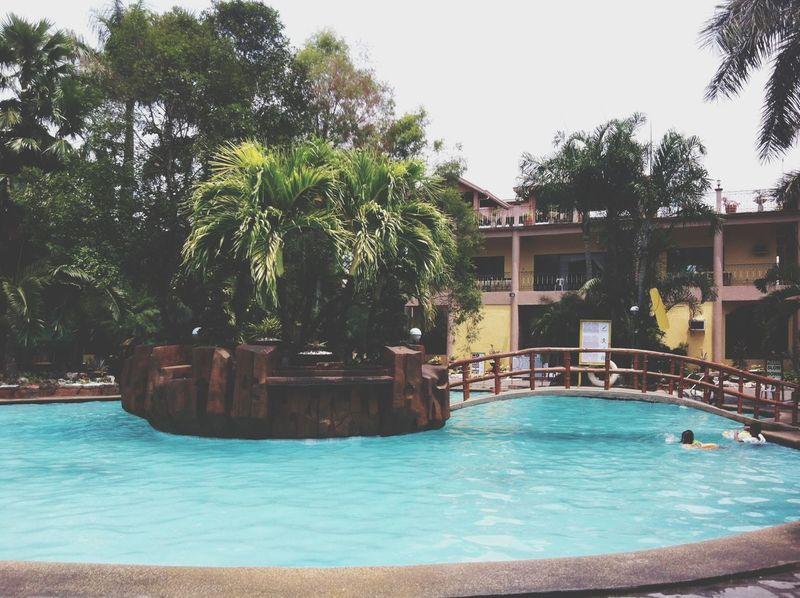Summer Beautiful Surroundings Pool