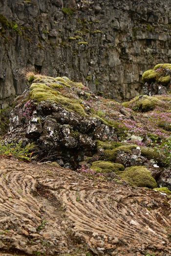 Geology Hot Dry Rock Iceland Landscape Lava Nature