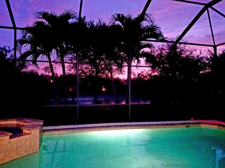 Outdoors Florida Sunset Florida Sunset Swfl Nature Sky Naples Naplesflorida Palm Trees Estero Grandezza Floridanights Pink Purple Firsteyeemphoto Newbie ✌ First Eyeem Photo