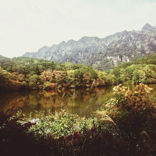 戸隠 秋の鏡池 紅葉🍁 japan nagao prefecture togakushi kagamiike autumn leaves Autumn Fall Beauty