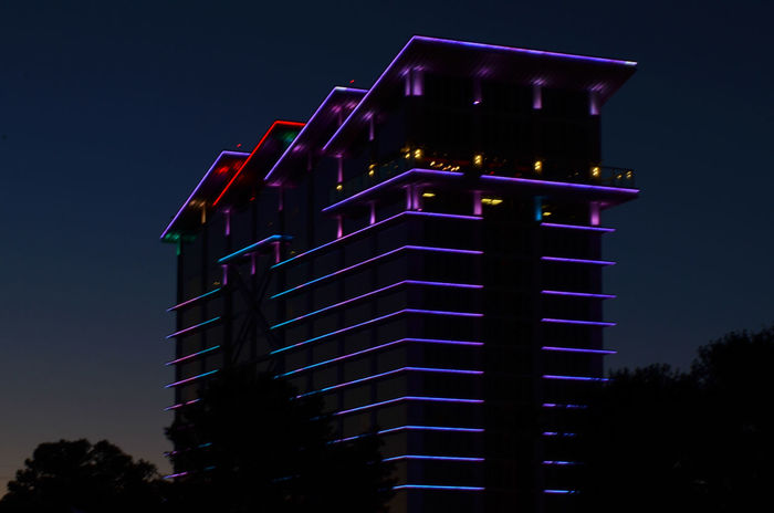 changing multicolored lights on Las Vegas building at night Architecture Building Exterior Built Structure Color Color Light Illuminated Low Angle View Nature Night No People Outdoors Sky Tree