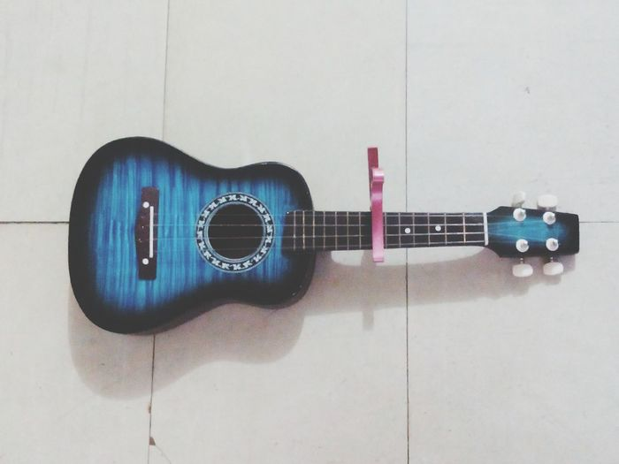 Music conquers everything. Music Ukulele Partners Partnersincrime