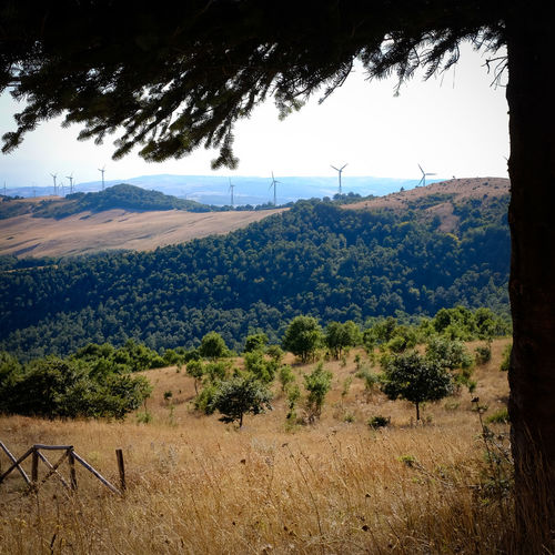 Puglia Beauty In Nature Daunia Day Grass Landscape Mountain Nature No People Outdoors Scenics Sky Tranquil Scene Tranquility Tree