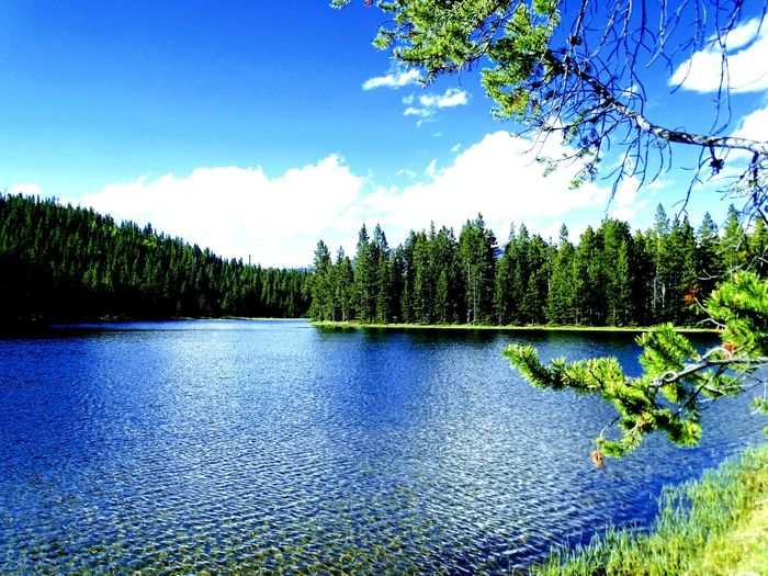 ⛰ Mountains West Lake Tensleep Big Horn Mountains Big Horn National Forest Wyoming Beauty In Nature Nature Outdoors Day No People Tree Lake Reflection