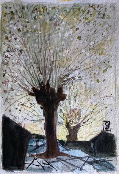 Winter Tree6x4 Watercolour Surrey Artists'Open Studio for Chertsey Artist, 19 artists taking part at 6a Windsor Street Chertsey kT16 8AS from 11to12 and 18to19 June opening from 11am to 5pm Watercolour ArtWork The Purist (no Edit, No Filter) .