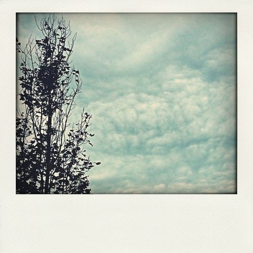 Sky2 Taking Photos CloudsCloudsClouds