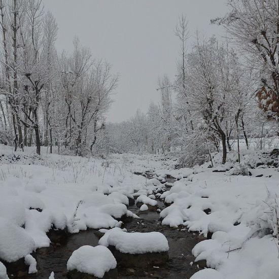 Kashmir Pakistan Winter Snow SnowClad Stream Ara Stones Bandipur IExploreKashmir IExploreMe ILoveKashmir Itravel IPhotographKashmir Iphotograph Iclick IAmRevo Revoshotsphotography Revoshots Rebel Revo Freedom