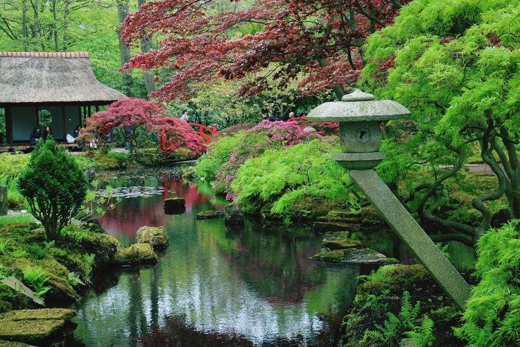 Zen Garden Zen garden architecture Zen Buddhism Garden Religion Meditation Relaxation