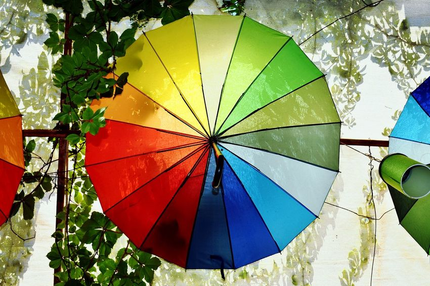 rain me rainbows Low Angle View Love Contrast Orange Blue Rainbow Rainbow Colors Rainbow Umbrella Vines Grape Vine Grape Vines Green Tourism Unique Multi Colored Tree Protection Close-up Umbrella Sunshade Rainy Season Rain Rainfall Wet Canopy Under Shelter