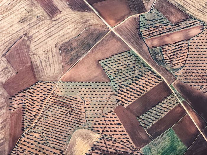 Aerial view of cultivated land