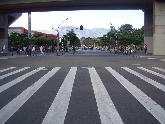 Medellín Inner Circle Street Zebra Crossing