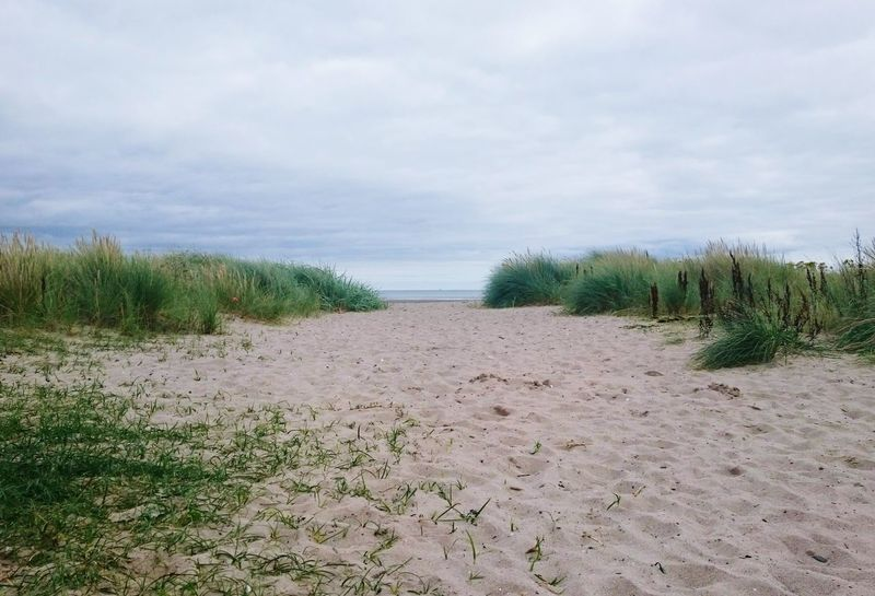 Sandhead Sands Of Luce Sandhead Beach Sand Dune Sand Dunes Sand & Sea Beach Beach Photography Beachphotography Beach Life Beachlife Sandy Beach Sand And Sea Sand Beach Scotland Scottish Scottish Beaches Scotlandsbeauty