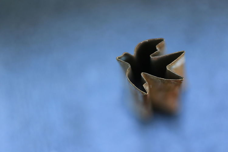 High angle view of leaf shape cookie cutter on table