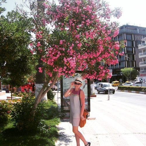 Kuşadası :)Hello Merhaba Kusadasi Kusadasimarina blossom tree city pink holidays turkiye Turkey exploreturkey amazing girl lovethiscountry tourist happy turkey_home adventureinturkey