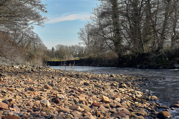 Surface level of rocks by river against sky