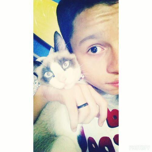 nina 💕 Cat