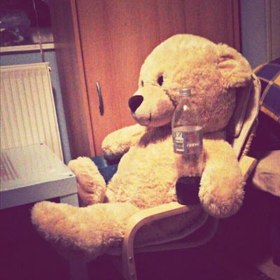 teddy's break Popcorn Teddy Chilling