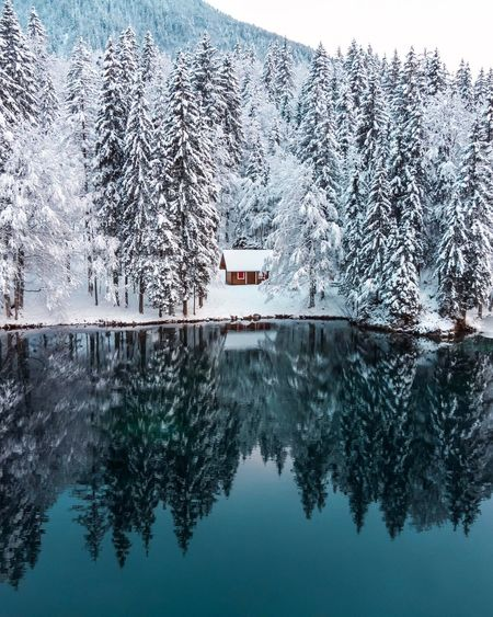 Winterwonderland Tree Water Nature Plant Transportation No People Day Mode Of Transportation Waterfront Reflection Winter Architecture Beauty In Nature Built Structure Cold Temperature Sky Snow Digital Composite Outdoors