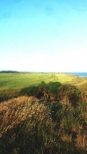 Landscape Long Walks Escaping Relaxing Nature Cliffs