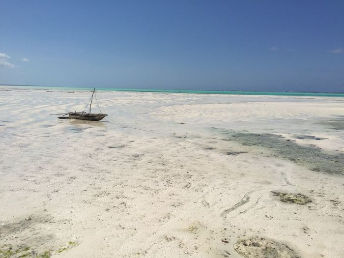 Jambiani Beach , Zanzibar Low Tide Zone Sea Nature Water Scenics Tranquil Scene Tranquility Beauty In Nature Summer Exploratorium