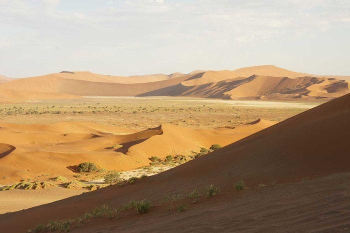 Cider Cracked Dawn Desert Dune Dusk Namibia Ostrich Red Sand Sand Dune Sossusvlei Sunrise Sunset