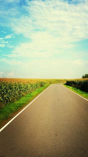 Road Corn Just Around The Corner