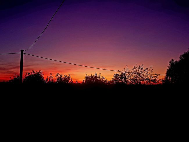 Colorful Sky Colorful Nature Sunset No People Nature Sky Outdoors Beauty In Nature Tree Croatia Slavonski Brod Red Sky Purple Sky