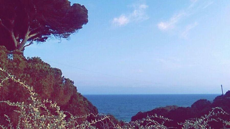 Sea Horizon Over Water Sky Ocean Holiday Bliss.