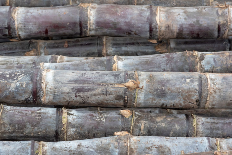 Sugar cane Full Frame Backgrounds Close-up No People Old Day Textured  Weathered Metal Architecture Pattern Outdoors In A Row Built Structure Industry Bad Condition Wood - Material Rusty History Winemaking Sugar Cane Sugar Sweet Fruit