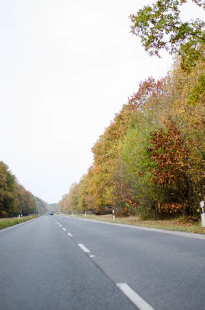 Asphalt Autumn Autumn Colors Car Curve Day Daytime Driving Highway Land Vehicle Mode Of Transport Nature No People November Outdoors Road Road Marking Street The Way Forward Transportation Tree Winding Road Windshield