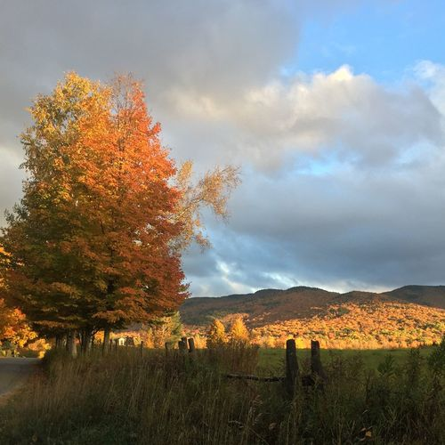 Days end on an October day IPS2015Fall Vermont Nice View Autumn Colors Autumn Fall Beauty Fall Colors IPhone Photography IPhone Iphone6 Evening Sky