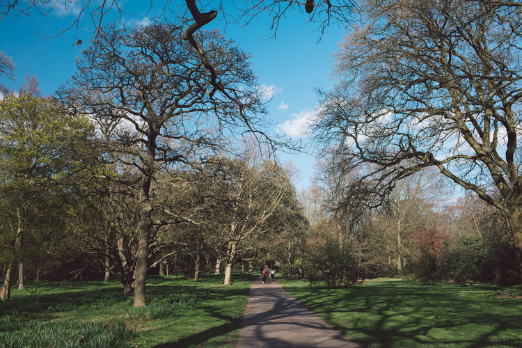 The Path Ahead Path Garden Springtime Spring Green Grass Trees Nature Beauty In Nature Blue Sky Shadows