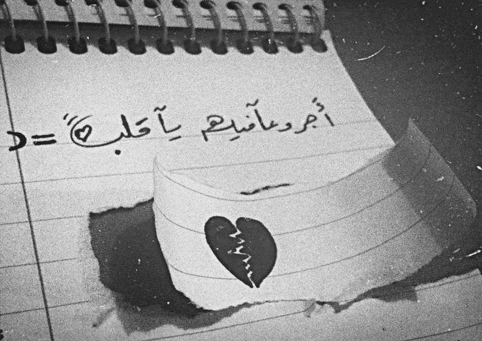 تصويري جمالها_ببساطتها المصورين العرب قروب المصورين العرب