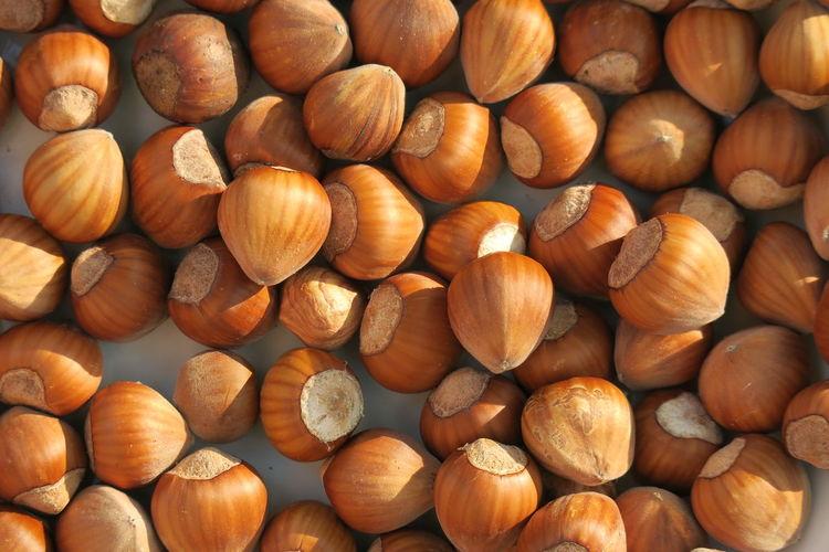 Full frame shot of hazelnuts