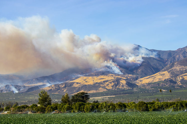 Thomas Fire burns hillside above city of Fillmore in Ventura County California Flames Helicopter Out Of Control Smoke Dangerous Day Evacuation Fire Fire Fighter Fire Fighters Landscape Mountain Mountain Range Mountains Nature No People Outdoors Pillar Scenics Smoke - Physical Structure Wildfire