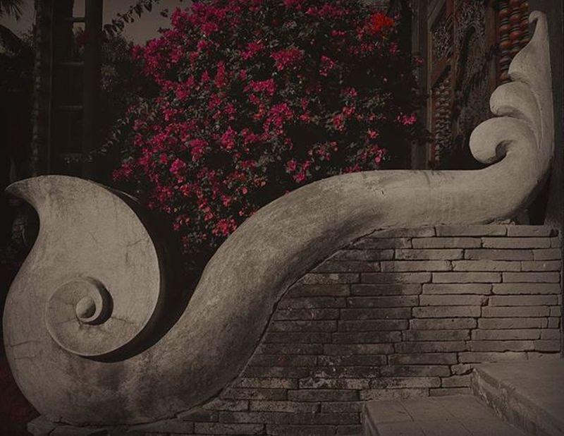 チェンマイ│2015.12.22 チェンマイ滞在中の方とお会いしたい Chiangmai Ig_life 一人旅 写真好きな人と繋がりたい 散歩 Asian  Travel 沈潜 チェンマイ Temple Monochrome Blackandwhite Colorsplash Spotted In Thailand