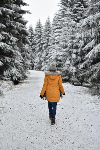 Rear view of man walking in snow
