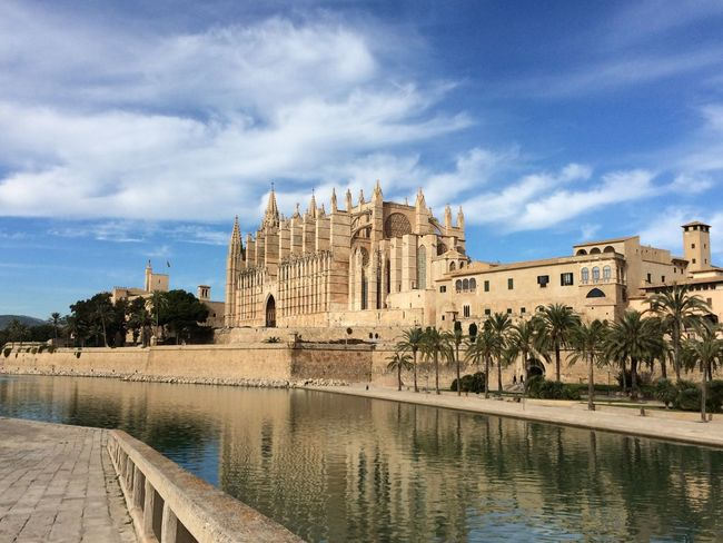 Balearic Islands Blue Sky Cathedral Church La Seu Mallorca Palm Trees Palma De Mallorca Water Reflections