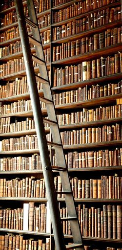 Arrangement Bibliothek Bibliotheque Book Books Dublin Dublin, Ireland History History Bueilding Ireland Irelandinspires Ireland🍀 Irland Ladder Large Group Of Objects Library Library Book Library Of Trinity College Trinity College Trinitycollege Everything In Its Place