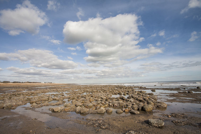 Sea view at low tide of Pett Level cliff end exposing rock formations covered with sea life growth and the emains of ancient forest Ancient Forest Buried By Sea Beauty In Nature Clouds And Sky Coastline Fossils And Rocks Horizon Over Water Nature_collection Nature_perfection Puddles Rocky Coastline Sandbeach Sea And Sky Sea Life Seascape Seaside_collection Strange Rockformations