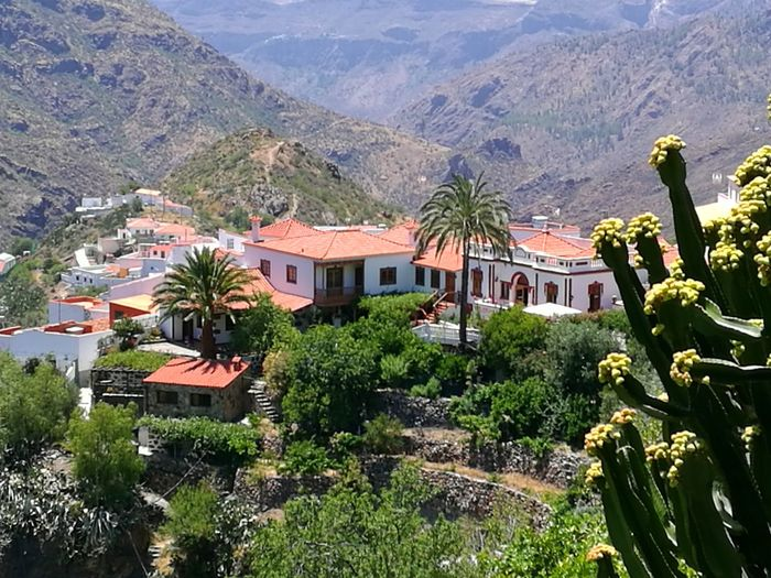 Tejeda, Spain The Most Beautiful Place In The World Beauty In Nature Architecture Tree Mountain Range High Angle View Mountain Outdoors Nature No People Day Palm Tree Tropical Climate Tejeda Gran Canaria Cumbre Poblado Beatiful Town