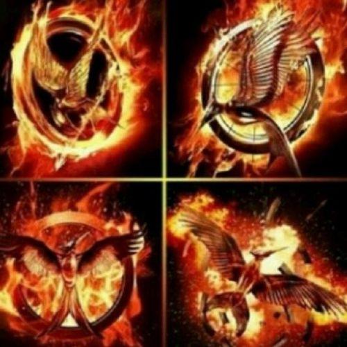 Mockingjay [Mockingjay Katniss Everdeen Thehungergames THG MockingjayBird]