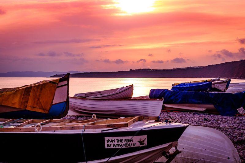 Dusk on Devon Shores Sunset Sea Beach Sky Nature Nautical Vessel No People
