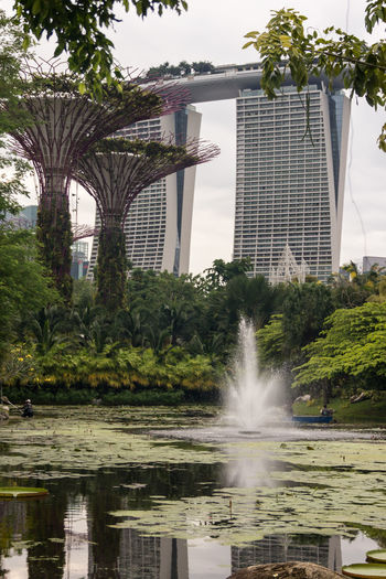 Architecture Building Exterior Built Structure City Day Fountain Growth Nature No People Outdoors Sky Spraying Tree Water