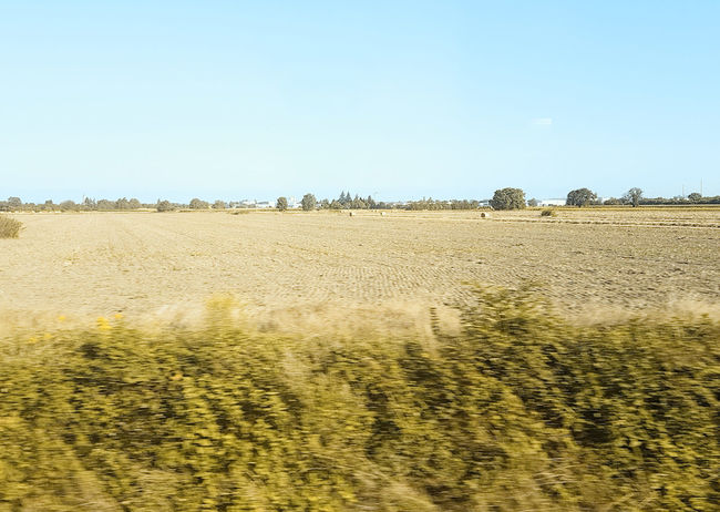 #15752 Agriculture Environment Field Landscape Outdoors Rural Scene Sky Sunlight Tranquil Scene View From Train Window
