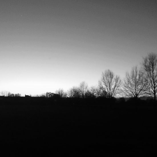 In pitch dark / I go walking in your landscape EyeEmNewHere Tree Nature Tranquility Clear Sky No People Silhouette Landscape Sky Tranquil Scene Scenics Outdoors Bare Tree Beauty In Nature Day Blackandwhite Monochrome Streetphotography EyeEmNewHere Thegreatoutdoors-2017EyEmawards