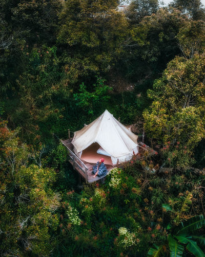 High angle view of tent on field in forest