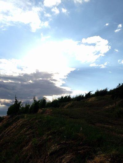 Viticulture Vineyard Sky Tokaj Wine Region Windy Day Daily Green Terraces Vitalis Hanging Around at top of Szarvas slope