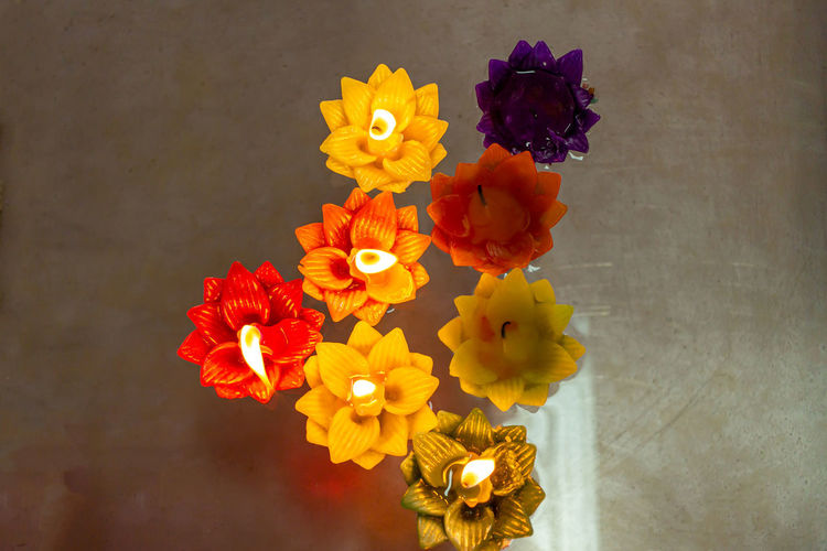 Close-up of multi colored flower vase against wall